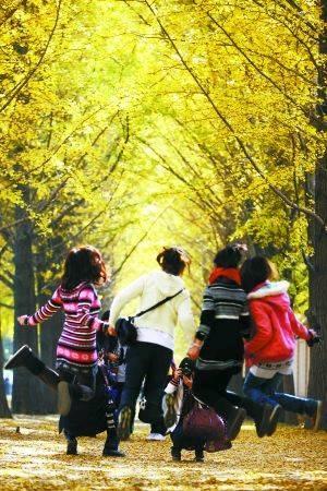 九月到了 北京郊外的秋天来了